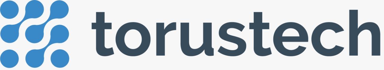 Torus Technology